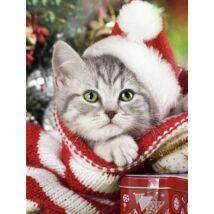 Gyémántkirakó készlet - Mikulás sapkás cica