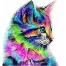 Gyémántkirakó készlet - Színes cica