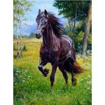 Gyémántkirakó készlet - Futó ló