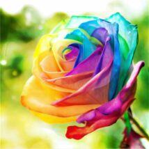 Gyémántkirakó készlet - Színes rózsa