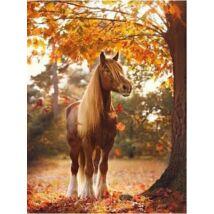 Számfestő - Barna ló őszi tájban