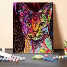 Számfestő - Változat színes cicára