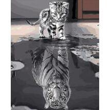 Számfestő - Kicsi cirmos tükörképe