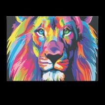 Számfestő - Színes oroszlán