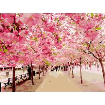 Számfestő - Cseresznye virágok