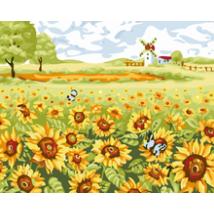 Számfestő - Napraforgó mező
