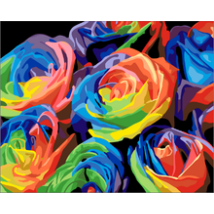 Számfestő - Színes rózsák