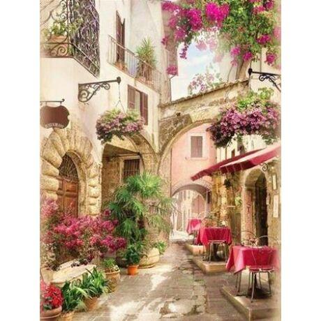 Számfestő - Virágos utcácska