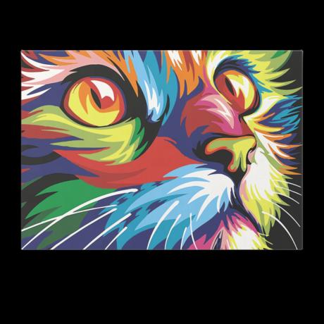 Számfestő - Színes macska